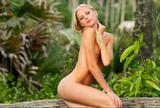 Sarah - Jungle Lovej0t3vr5zqm.jpg